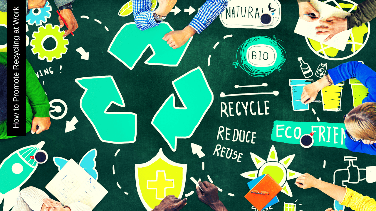 How to Promote Recycling at Work - Lake Macquarie Skips